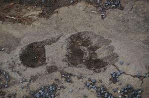 Hike to 1790 Footprints, Hawaii Volcanoes National Park