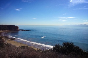 Visit Abalone Cove State Marine Conservation Area and Point Vicente State Marine Reserve,