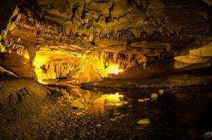 Explore Abbey Caves, Whangarei, North Island