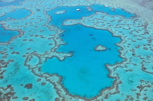 Explore Great Barrier Reef, Australia (UNESCO site)