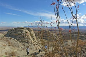 Complete the  5 Hikes for 50 Years Challenge, Anza-Borrego, California
